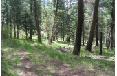 18383551, Rare Divideable Acreage near Wallowa Lake