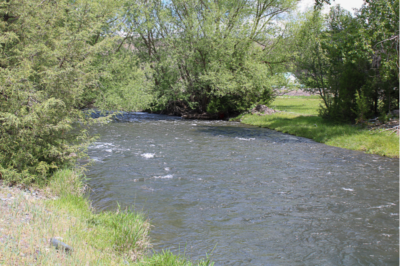 Buildable 160 Acres with Water and Views!