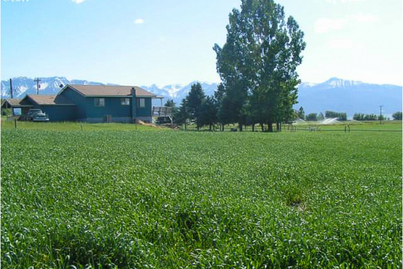 74 Acre Irrigated Ranch